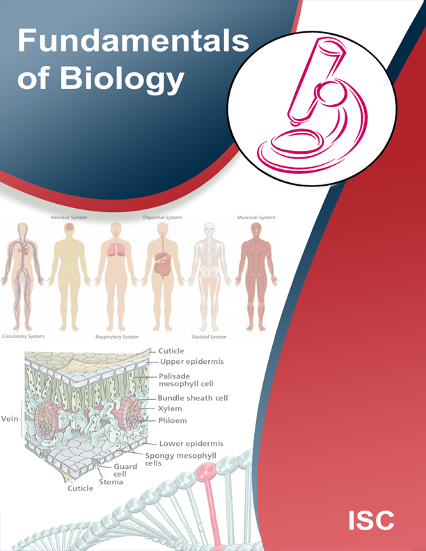 fundamentals of biology Biology is a vast subject containing many subdivisions, topics, and disciplines among the most important topics are five unifying principles that can be said to be the fundamental axioms of modern biology:[2] 1 cells are the basic unit of life 2.